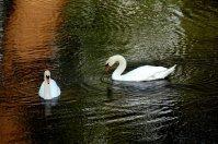 fotogaleria-eurovelo_13041.jpg